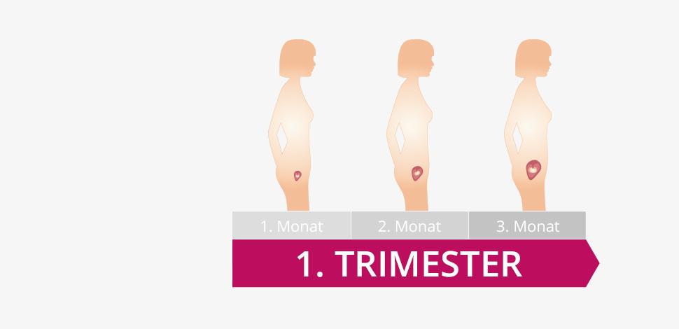 Woran erkennt man einen schwangerschaftsbauch