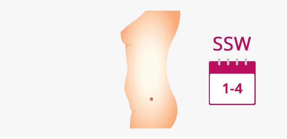 5 tage vor eisprung schwanger