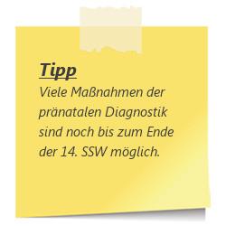 Tipp zur SSW 13: praenatale Diagnostik