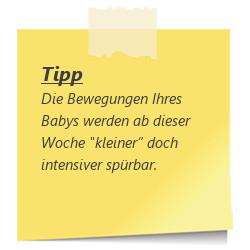 Tipp zur SSW 29: Bewegungen des Babys werden kleiner