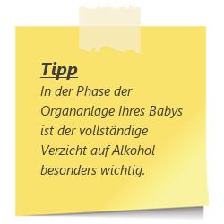 Tipp zur SSW 9: auf Alkohol verzichten