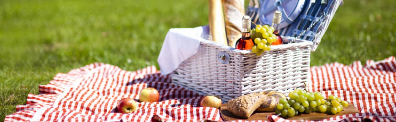 tipps f r ein unvergessliches picknick. Black Bedroom Furniture Sets. Home Design Ideas