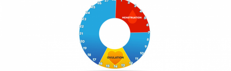 fruchtbare tage berechnen mit ovulationstest und anderen methoden. Black Bedroom Furniture Sets. Home Design Ideas
