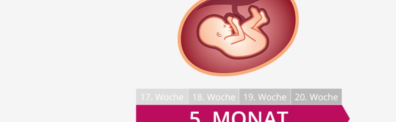 5. Schwangerschaftsmonat » Mutter, Bauch & Baby im 5. Monat