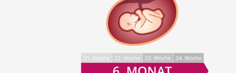 6 Schwangerschaftsmonat Mutter Bauch Baby Im 6 Monat